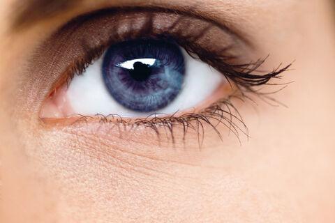 248000_eye.thumb.jpg